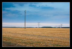 Dans les champs (Florent Bouckenooghe) Tags: cloud france landscape nikond70 ciel nuage paysage campagne fra champ 50mmf14 oise poteaulectrique francelandscapes andeville dsc6344nef