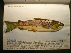 Travel Journal - Trout (noriko.stardust) Tags: travel fish art illustration watercolor painting notebook japanese fly sketch fishing drawing journal illustrations blogger watercolour trout