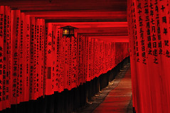 [フリー画像] [人工風景] [神社/仏閣/寺院] [伏見稲荷大社] [鳥居] [日本風景] [京都] [赤色/レッド]    [フリー素材]