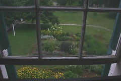 Shaker Herb Garden through handblown window (meadowglenfarm) Tags: herbs kentucky historic shaker pleasanthill shakervillage herbgarden ourkentucky