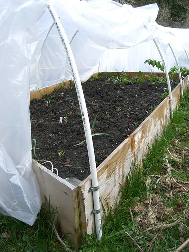 How to Make a Hoophouse on a Raised Bed | Organic Gardening Blog Rabbit En Hoop House Plans on rabbit photography, rabbit compost, rabbit tractor plans, rabbit hill house, rabbit cage tractor, rabbit fruit, rabbit hole house, rabbit garden house, rabbit greenhouse,