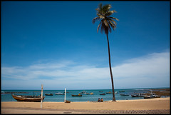Praia do Forte Postcard (frmorais) Tags: brasil bahia praiadoforte flickrchallengegroup flickrchallengewinner