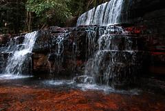 VEN_ROR.084 (photonogrady) Tags: red tree green rock stone river rouge waterfall pierre riviere vert vegetation geology cascade arbre rocher geologie