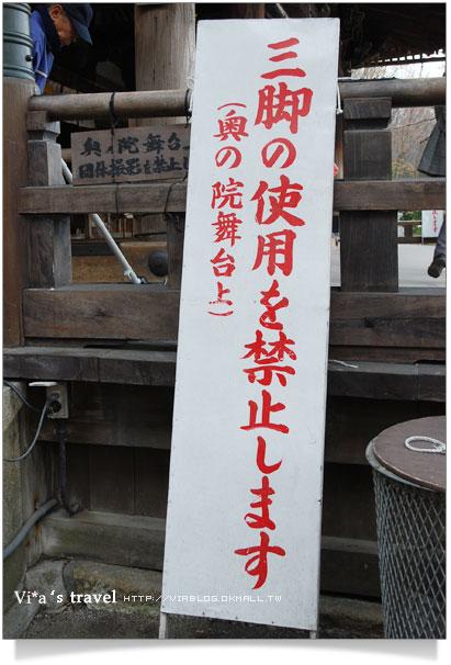 【京都春櫻旅】京都旅遊景點必訪~京都清水寺之美京都清水寺31