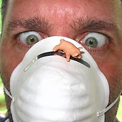 Influenza Porcina pánico pandemia