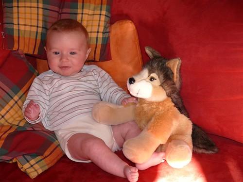 Der kleine Wolf mit Kuschelwolf
