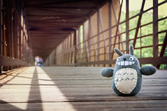 Totoro on the Bridge!! (pixelmama) Tags: shadows totoro amigurumi onthebridge islandpark rachelsbirthday genevaillinois genevaparkdistrict bokehpeeps toyintheframethursday htitft