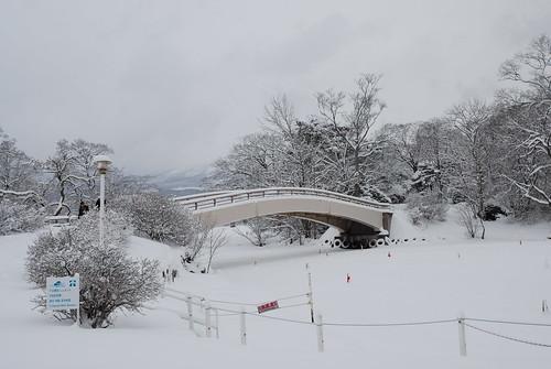 北海道 Day2 札幌_094.JPG