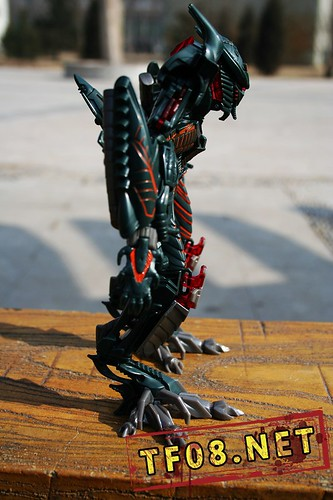 Transformers 2 The Fallen perfil
