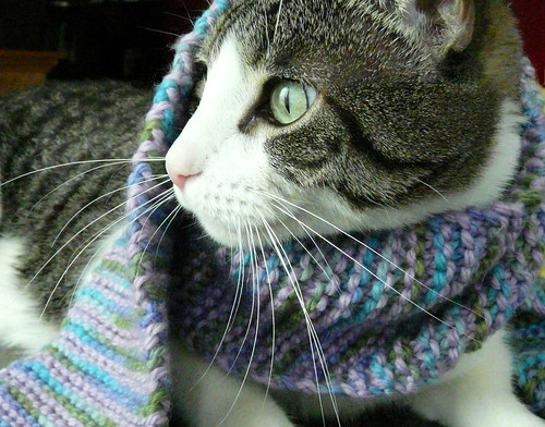 FO: Simply 17 modeled by Rocky T. Cat