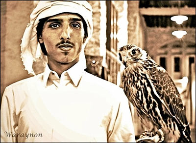 Arab man with falcon