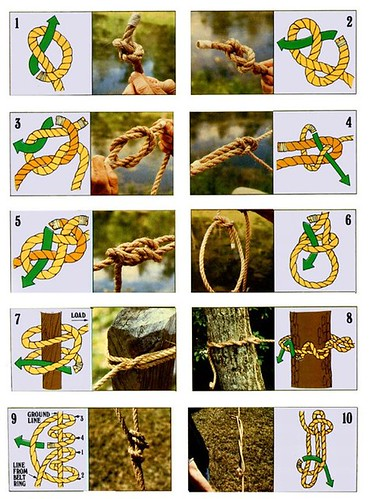 Ten Basic Knots