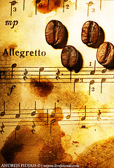 Coffee beans on a grungy musical background (NejroN) Tags: old music brown black texture coffee beautiful sign closeup sepia vintage dark paper design cafe ancient key pattern natural background stripes grunge piano bean retro stained note melody musical burnt page worn instrument backdrop classical torn material concept damaged caffeine scratched aromatic burned ragged grungy aroma crumpled brewed