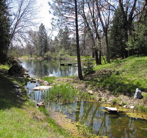 falls & pond