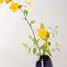 0904 flowers B #2