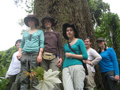 Students from Rushcliffe beside the endangered Maobi tree