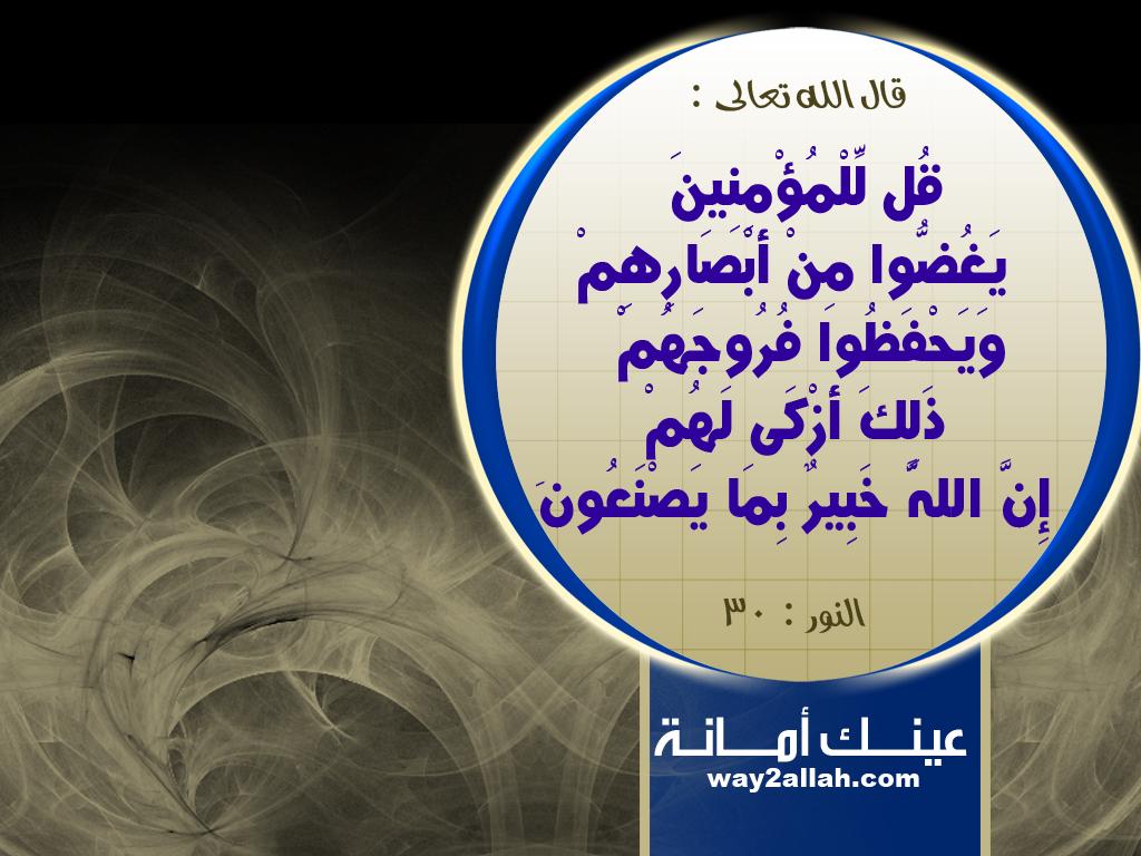 حملة عيـــــنك أمانة  3488925081_6839468915_o