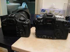 Canon 500D vs Canon 50D [Explored]