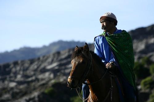 horseman gazing