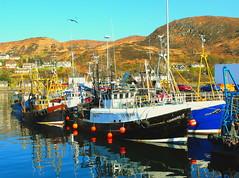Mallaig (:caroline:) Tags: sea sky reflection boats scotland highlands fishing mallaig