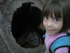 3 - Sophie  and a Hollow Tree Trunk