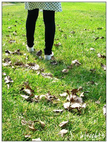腳步與枯葉