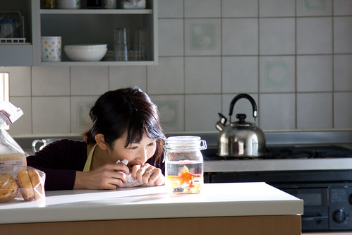The Wife (Kudou Amane) is delighted to see the goldfishes