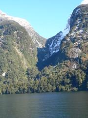 Doubtful sound (1winika) Tags: newzealand southland doubtfulsound fiordland fiordlandnationalpark crookedarm nowazelandia patea saveearth