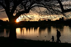 Father and Daughter, Sunset at Centennial Park Sydney Australia (Alex E. Proimos) Tags: life park xmas family sunset man reflection love girl beauty canon children poster centennial hug kiss dad day time god photos walk uncle gorgeous sunday daughter sydney australian mother ducks kisses