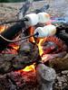 Marshmallow Toasting