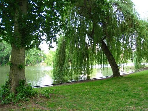 Park am Litzensee