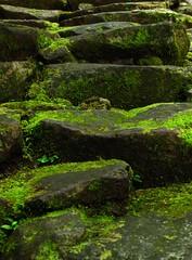 Stone Stairway to the Twin Lakes (eazytraveler) Tags: nationalpark twinlakes negrosoriental sibulan