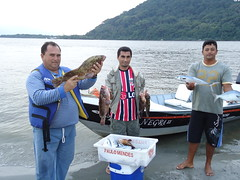 pescaria no castilho