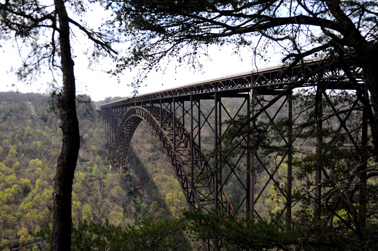 web_bridgetrees_westvirginia_0032