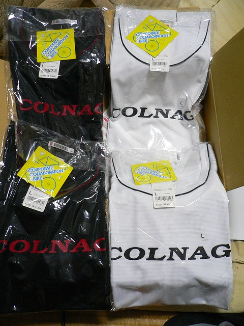 コルナゴTシャツ(ユニクロ)