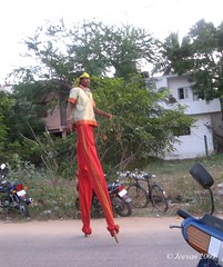 A tall man in Chennai Sangamam