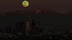 Old Moon over Los Angeles (Daryl's World TTL) Tags: night losangeles downtown fullmoon moonrise perigee wolfmoon oldmoon january102009