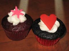 Valentine Cupcake samples