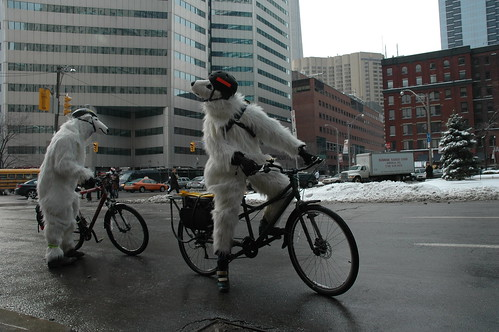 Polar Bear Bike