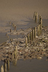 Low Tide (Mortarman101) Tags: