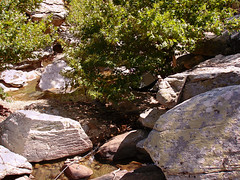 Spot the tent (egotoagrimi) Tags: agrimi ikaria camping river freecamping outlaw rocks tent hammock αετόσ χάλαρη ικαρία