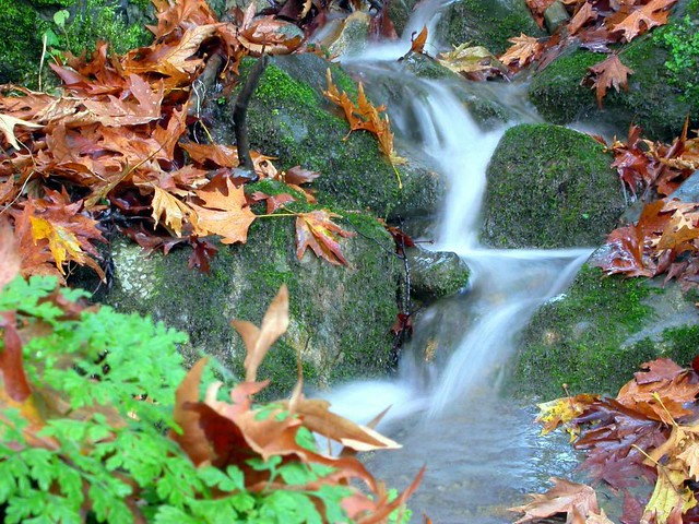 Στερεά Ελλάδα - Ευρυτανία - Λημέρι Τα χρώματα της φύσης στο Λημέρι Ευρυτανίας