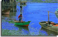 DSC_5872a Tanjung Pinang (chiang arthur) Tags: travel sea indonesia boat fishing fisherman tour digitalcameraclub naturepeople tanjungpinang colourartaward