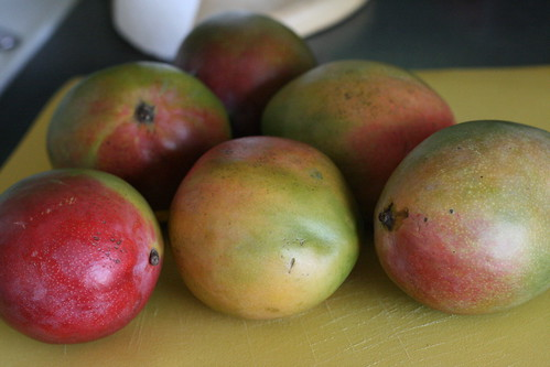 Adventures in Homemade Baby Food – Mangoes