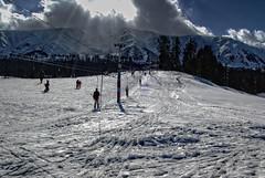Skiing in the meadow of Flowers | Kashmir (Rekha Bhatt) Tags: winter india snow ski mountains sport landscape flickr skiing kashmir gulmarg