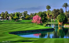 Palm Springs California - Golf (Mine Beyaz) Tags: california pink trees mountains color colour green grass marriott golf fun colorful palmsprings explore colourful cheerful blueribbonwinner supershot mywinners platinumphoto anawesomeshot citrit colourartaward goldstaraward worldwidelandscapes minebeyaz vosplusbellesphotos palpsprings