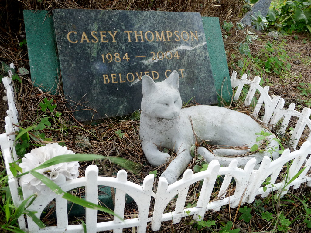 (paul hayes) Tags: sf pet cats pets dogs grave animals death san francisco