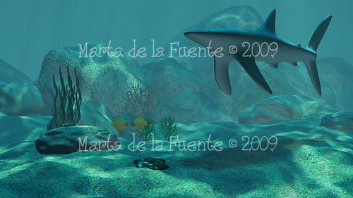 fondo_marino_blog
