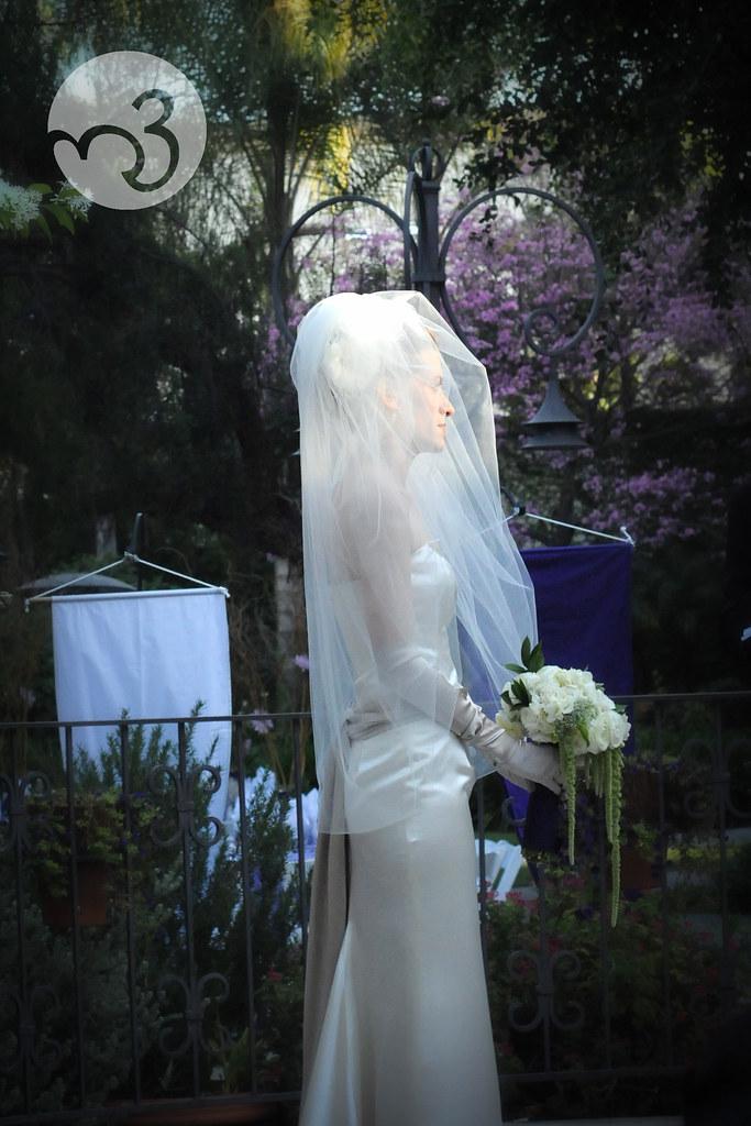 Dave & Tara's Wedding