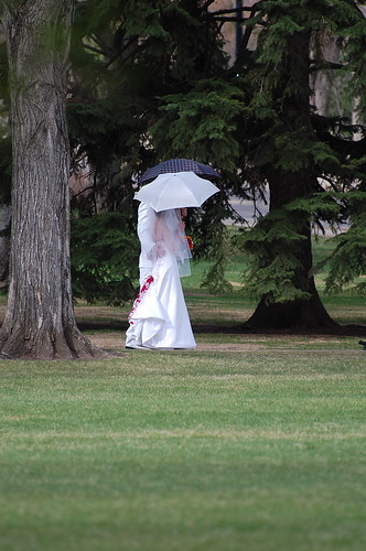 couple-just married at the legislature grounds